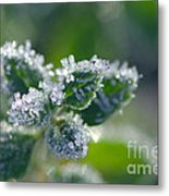 Ice Crystals With Stars Metal Print