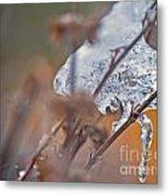 Ice Drop Metal Print