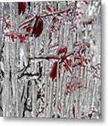 Ice Fence Metal Print