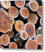 Ice Logs Metal Print