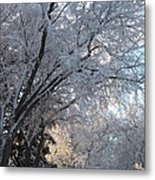 Ice On The 6th Metal Print