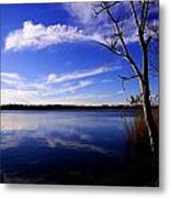 Ice Over The Lake Metal Print