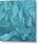 Ice Patterns Formed On Glass Metal Print