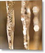 Ice Reflections Metal Print