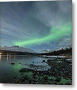 Ice Seal Metal Print