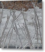 Ice Sticks Metal Print