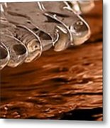 Ice Toes On Fire Metal Print