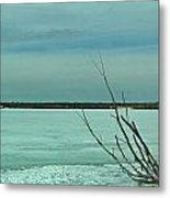 Ice Tree Metal Print