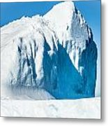 Ice Xxxiii Metal Print by David Pinsent