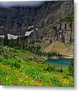 Iceberg Park Tarn Glacier National Park Montana Metal Print