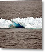 Iceburg With Passenger Metal Print
