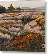 Iceplant And Chaparral Metal Print
