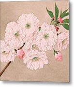 Ichi-yo - Single Leaf - Vintage Japan Watercolor Metal Print