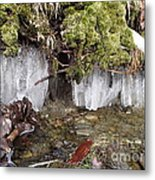 Icicles In The Stream Metal Print