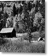 Iconic Cabin  Black And White Metal Print
