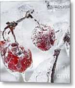 Icy Branch With Crab Apples Metal Print