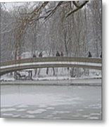 Icy Central Park Metal Print