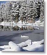 Icy Cold Metal Print