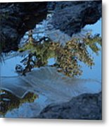 Icy Evergreen Reflection Metal Print