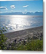 Icy-looking Kachemak Bay In Sunlight From Homer Spit-ak  Metal Print