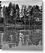 Icy Pond Reflects Metal Print