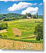 Idyllic Agricultural Landscape Panoramic View Metal Print