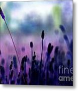 If I Had A Purple Crayon ... Metal Print