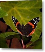 If Not A Monarch At Least A Princess Metal Print