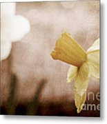 If These Flowers Could Speak  Metal Print