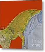 Iguana By The Tail Metal Print