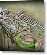 Iguana Named Mack Metal Print