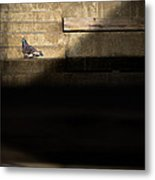 Il Piccolo Guardiano Metal Print