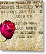 I'll Always Watch Over You Metal Print