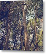 I'll Float Up Into The Wavy Trees Metal Print