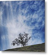I'll Still Be Standing Here Metal Print