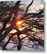 Illuminating Sunset Metal Print