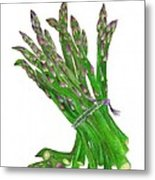 Illustration Of Asparagus Metal Print