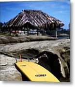 I'm Board Metal Print by Peter Tellone
