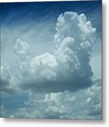 Image In The Sky Metal Print