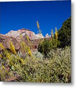 Image Of Zion 01 Metal Print