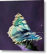 Imaginary Butterfly Metal Print