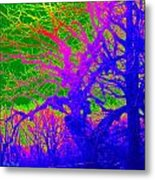 Imaginary Forest Number Two Metal Print