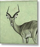 Impala Metal Print by James W Johnson