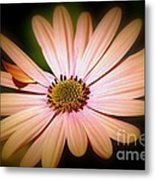 Imperfect Glow Metal Print