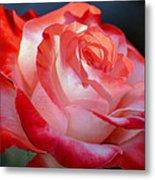 Imperfect Rose Metal Print