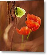 Impression With Red Poppies Metal Print