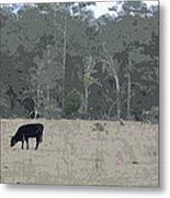 Impressionist Cows Grazing Metal Print