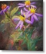 Impressions Of An Aster Metal Print