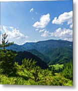 Impressions Of Mountains And Forests And Trees Metal Print