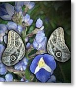 In A Butterfly Garden Two Metal Print